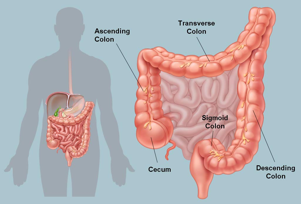 Advanced Colorectal Cancer Treatment Hospital in Hyderabad, laparoscopic hernia repair surgery doctor near me