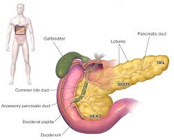 Best Laparoscopic technique for Gallbladder removal in Hyderabad, gallbladder surgery specialists near me